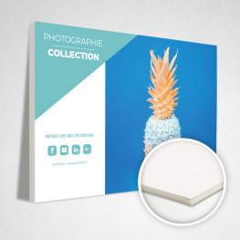 Carton plume 10 mm